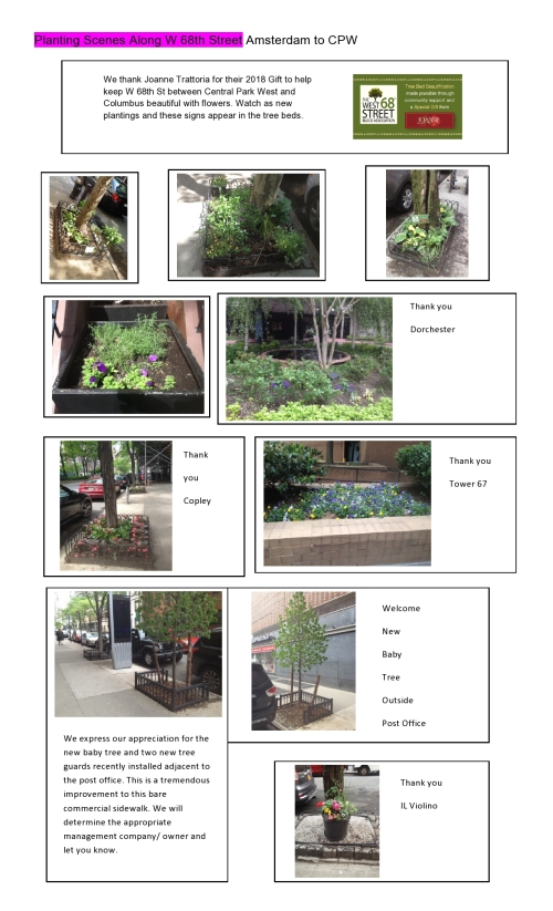 Planting Scenes Along W 68th St-page0001